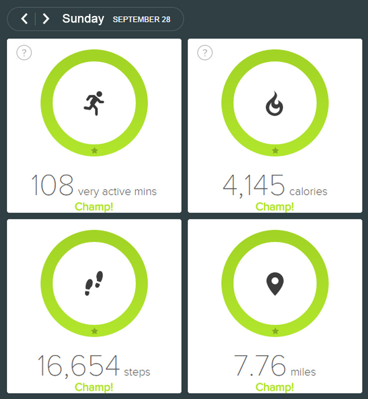 fitbit-09-28-2014